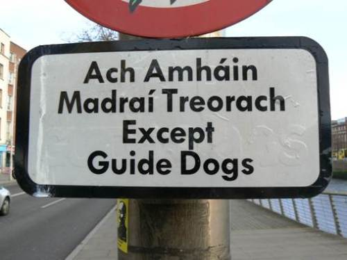 It may not be practical (given how few locals speak only Irish), but bilingual road signs splendidly show pride in place